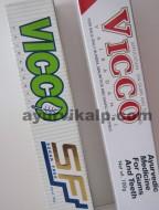 Vicco VAJRADANTI & Sugar Free Toothpaste 100gm, Ayurvedic Medicine for Gums & Teeth