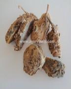 AMBE HALDI, Wild Turmeric, Mango Ginger, Raw Whole Herbs of India