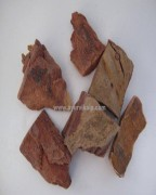 arjuna herb | terminalia arjuna | herbs for heart health