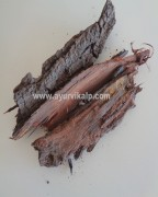 BABOOL Bark, Acacia Arabica, Raw Whole Herbs of India
