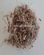 BANAFASA LEAVES, Sweet Violet, Viola Odorata Linn., Raw Whole Herbs of India