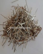 BHUMI AMLAKI, Phyllanthus Niruri, Chamber Bitter, Raw Whole Herbs of India