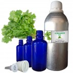 CORIANDER Essential Oils, 100% Pure & Natural - 10 ML To 100 ML Therapeutic & Undiluted