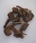 GILOY ROOTS, Guduchi, Tinospora Cordifolia, Raw Whole Herbs of India