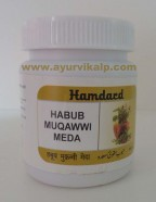 Hamdard, HABUB MUQAWWI MEDA, 100 Pills, Digestion, Stomach Troubles