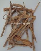 HADJOD, Hadjora, Cicssus Quadrangularis, Raw Whole Herbs of India