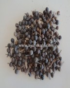 KABABCHINI, Cubebs, Piper cubeba Linn. Raw Whole Herbs of India