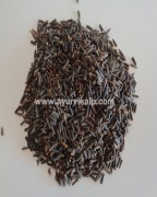 KALIJIRI SEEDS, Centratherum Anthelminticum , Purple Fleabane, Raw Whole Herbs of India