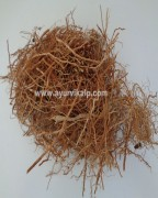 KHUS ROOT, Vetiveria zizanioides Nash, Cuscus Grass, Raw Whole Herbs of India