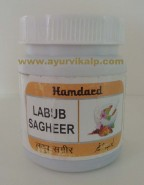 Hamdard, LABUB SAGHEER, 125g, Men's Health, Premature Ejaculation