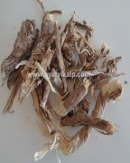 PUNARNAVA ROOT, Boerhavia Diffusa, Spreading Hogweed, Raw Whole Herbs of India