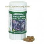 Shilajit Hills Capsules | shilajit capsules | increase stamina