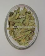 SONAMUKHI, Senna-Cassia Dried Leaves, Indian Senna, Raw Whole Herbs of India