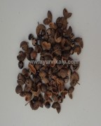 TOMAR SEEDS, Tumru, Zanthoxylum Piperitum Raw Whole Herbs of India