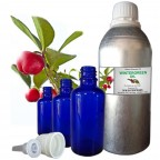 WINTERGREEN OIL, Gaultheria Procumbens, 100% Pure & Natural Essential Oil